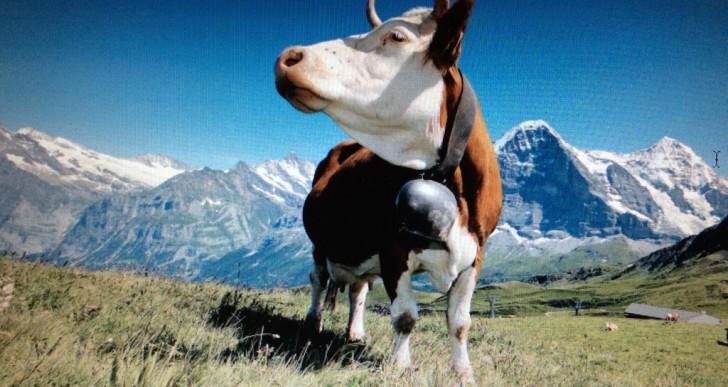 Un'estate da sogno nei paesaggi incontaminati delle Alpi Svizzere