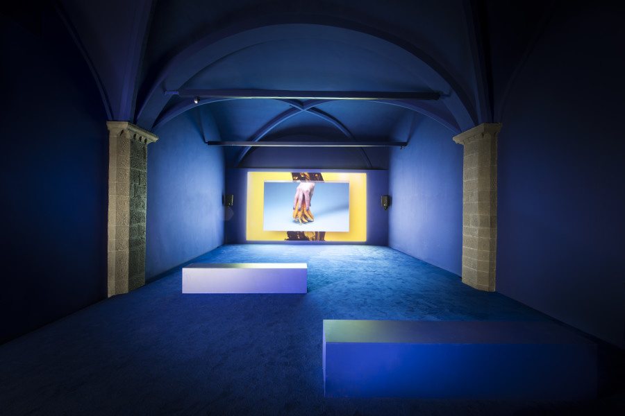 Gucci Museo_Camille Henrot Grosse Fatigue_1_Photos by Alessandro Moggi - © Gucci