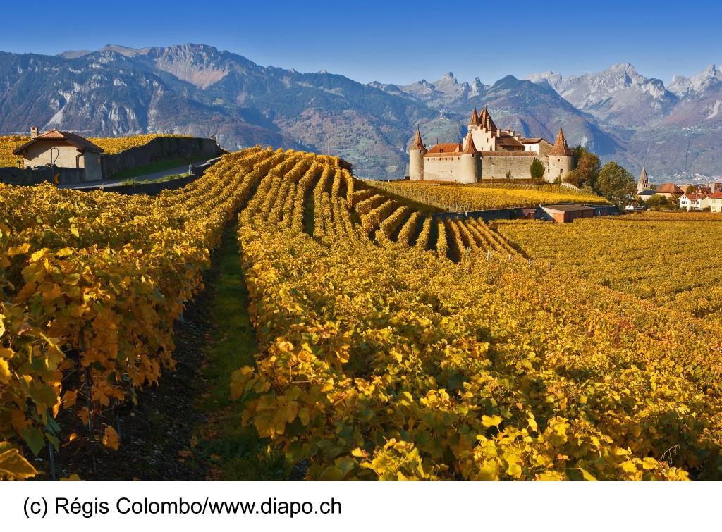Région viticole : Chablais