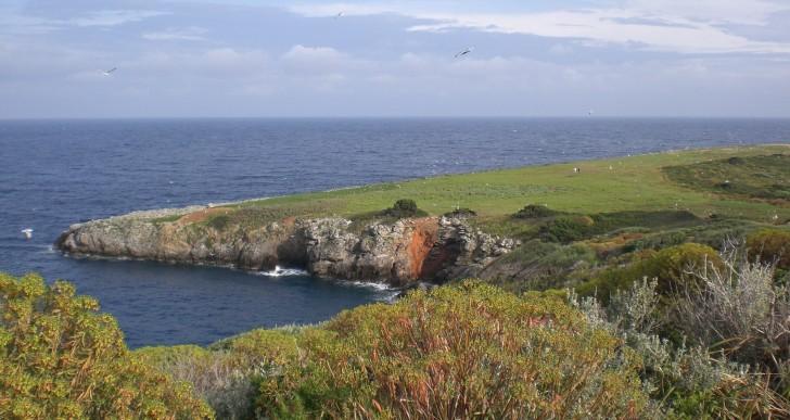 L'Isola di Giannutri e una giornata dedicata ai suoi fondali