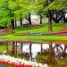 Keukenhof, in Olanda il giardino primaverile di fiori ispirato a Mondriaan