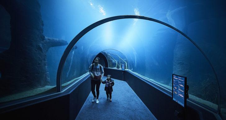 Aquatis, il più grande acquario d'acqua dolce e vivario di Europa