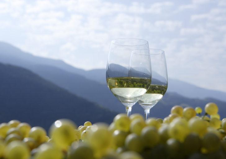 I vini dell'Alto Adige in degustazione a Firenze, domenica 7 ottobre